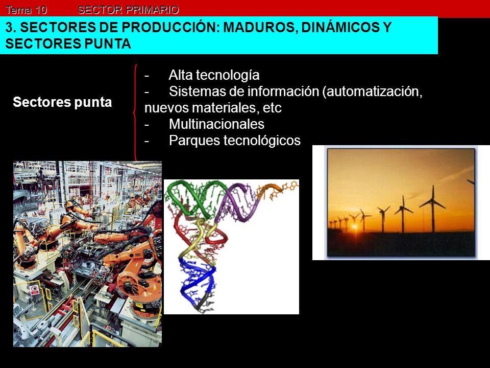 Tema 10 SECTOR PRIMARIO 3. SECTORES DE PRODUCCIÓN: MADUROS, DINÁMICOS Y SECTORES PUNTA Sectores punta -Alta tecnología -Sistemas de información (autom