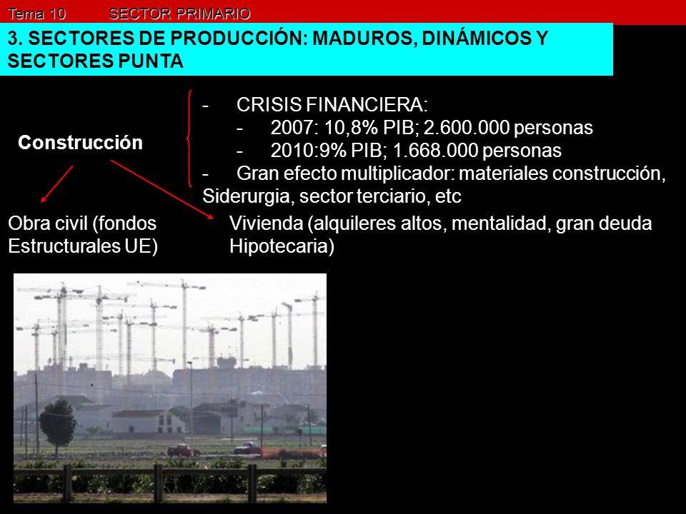 Tema 10 SECTOR PRIMARIO 3. SECTORES DE PRODUCCIÓN: MADUROS, DINÁMICOS Y SECTORES PUNTA Construcción -CRISIS FINANCIERA: -2007: 10,8% PIB; 2.600.000 pe