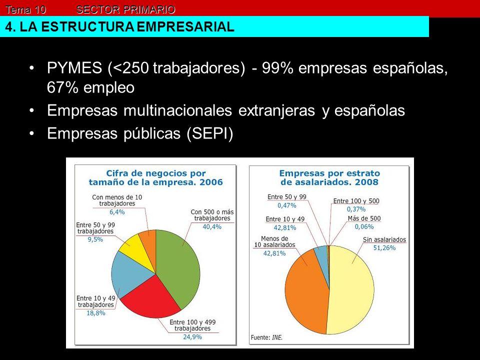 Tema 10 SECTOR PRIMARIO 4. LA ESTRUCTURA EMPRESARIAL PYMES (<250 trabajadores) - 99% empresas españolas, 67% empleo Empresas multinacionales extranjer