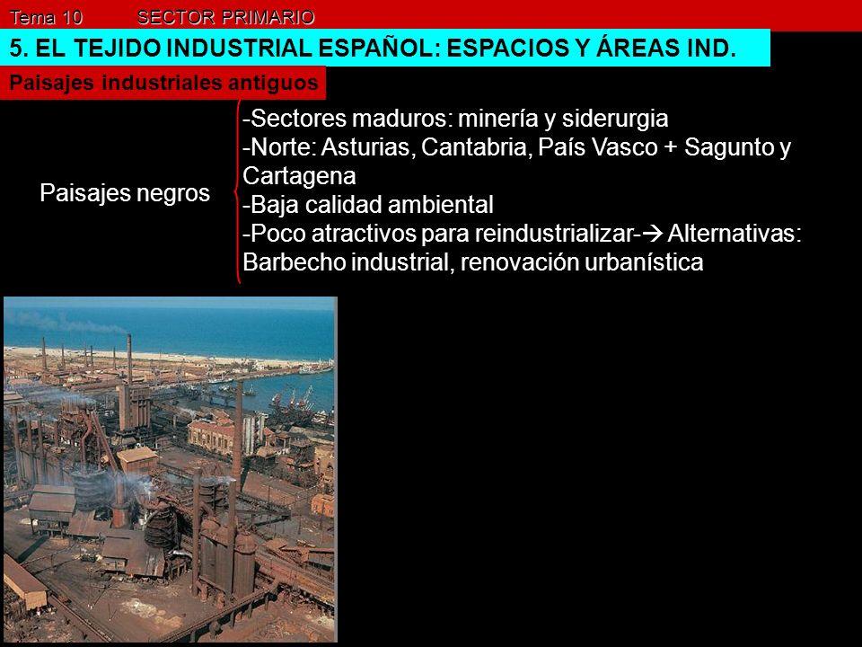 Tema 10 SECTOR PRIMARIO 5. EL TEJIDO INDUSTRIAL ESPAÑOL: ESPACIOS Y ÁREAS IND. Paisajes industriales antiguos Paisajes negros -Sectores maduros: miner
