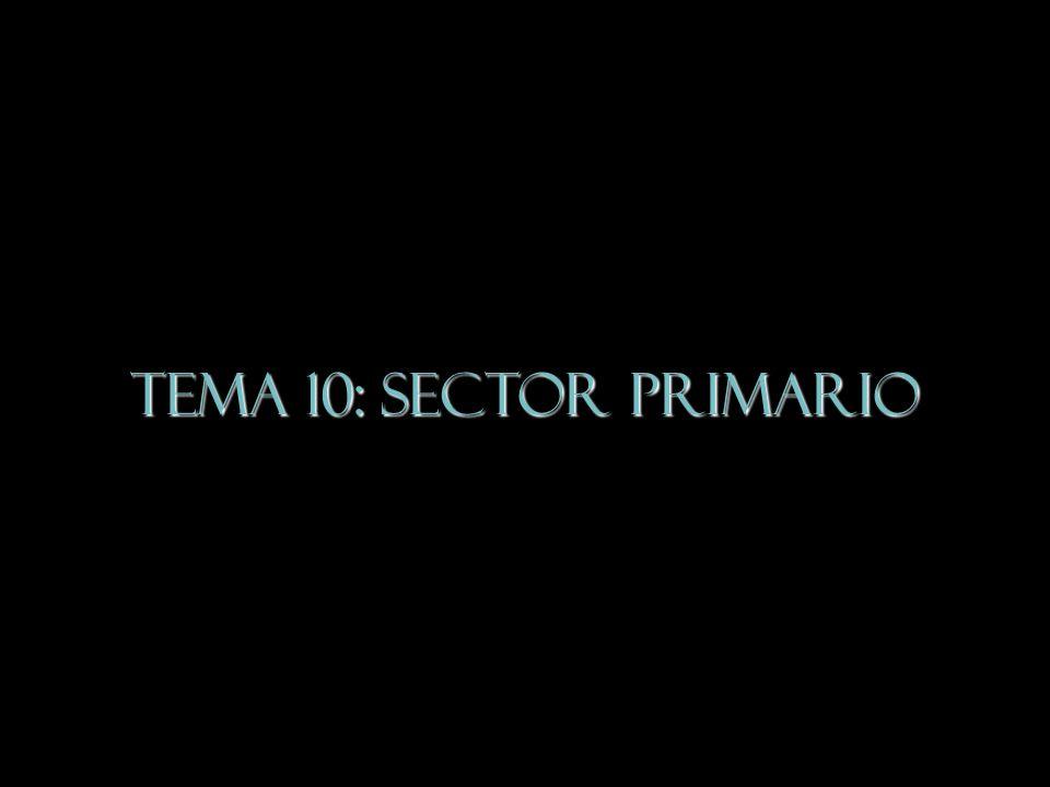 Tema 10 SECTOR PRIMARIO 1.