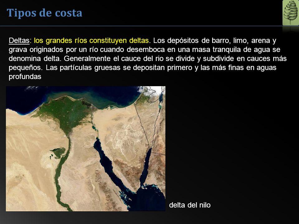 Deltas: los grandes ríos constituyen deltas. Los depósitos de barro, limo, arena y grava originados por un río cuando desemboca en una masa tranquila