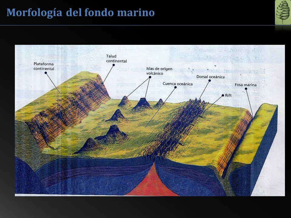 Penetra suavemente en el mar y suele formarse una barrera de arena a cierta distancia de la línea de costa por la acción e las olas.