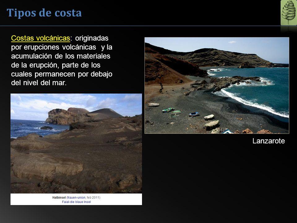 Costas volcánicas: originadas por erupciones volcánicas y la acumulación de los materiales de la erupción, parte de los cuales permanecen por debajo d