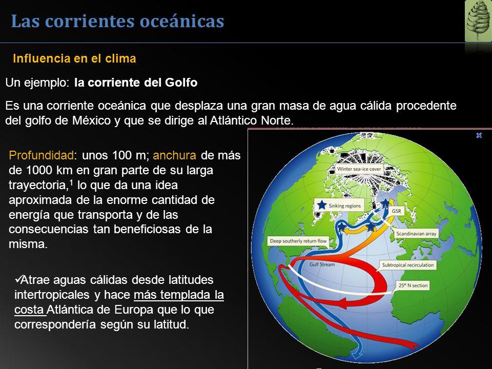 Un ejemplo: la corriente del Golfo Es una corriente oceánica que desplaza una gran masa de agua cálida procedente del golfo de México y que se dirige