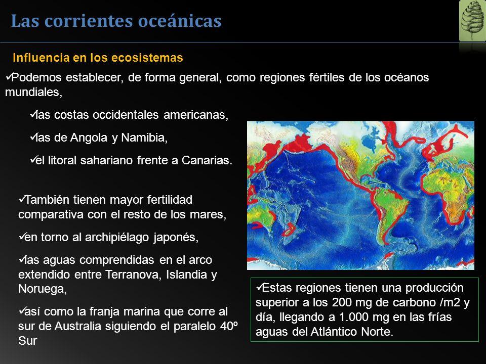 Las corrientes oceánicas Influencia en los ecosistemas Podemos establecer, de forma general, como regiones fértiles de los océanos mundiales, las cost