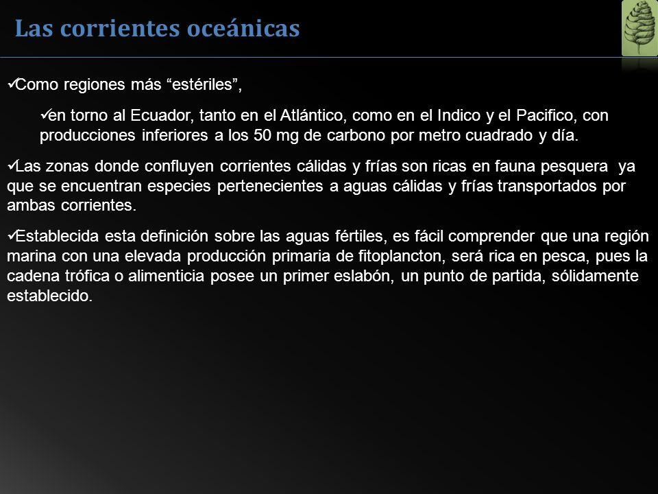 Las corrientes oceánicas Como regiones más estériles, en torno al Ecuador, tanto en el Atlántico, como en el Indico y el Pacifico, con producciones in