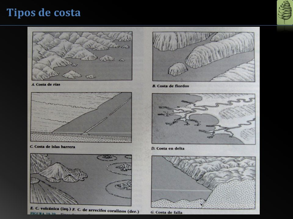 Ría de Villaviciosa Rias El nivel del mar llega hasta los valles excavados por los ríos.
