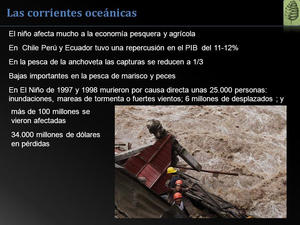 Las corrientes oceánicas El niño afecta mucho a la economía pesquera y agrícola En Chile Perú y Ecuador tuvo una repercusión en el PIB del 11-12% En l