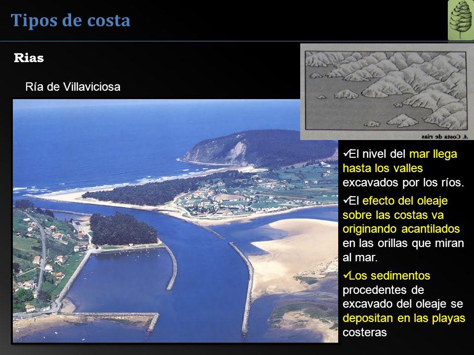 Ría de Villaviciosa Rias El nivel del mar llega hasta los valles excavados por los ríos. El efecto del oleaje sobre las costas va originando acantilad