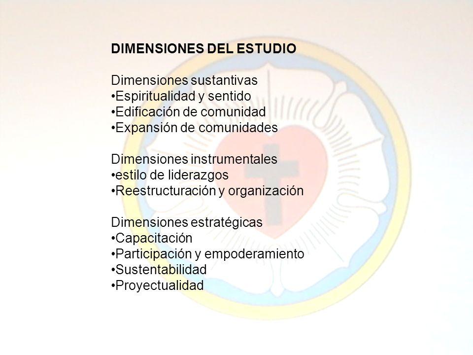 DIMENSIONES DEL ESTUDIO Dimensiones sustantivas Espiritualidad y sentido Edificación de comunidad Expansión de comunidades Dimensiones instrumentales estilo de liderazgos Reestructuración y organización Dimensiones estratégicas Capacitación Participación y empoderamiento Sustentabilidad Proyectualidad