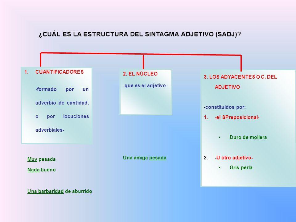¿CUÁL ES LA ESTRUCTURA DEL SINTAGMA ADJETIVO (SADJ)? 1.CUANTIFICADORES -formado por un adverbio de cantidad, o por locuciones adverbiales- Muy pesada