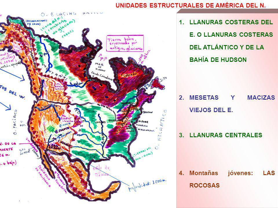 UNIDADES ESTRUCTURALES DE AMÉRICA DEL N. 1.LLANURAS COSTERAS DEL E. O LLANURAS COSTERAS DEL ATLÁNTICO Y DE LA BAHÍA DE HUDSON 2.MESETAS Y MACIZAS VIEJ