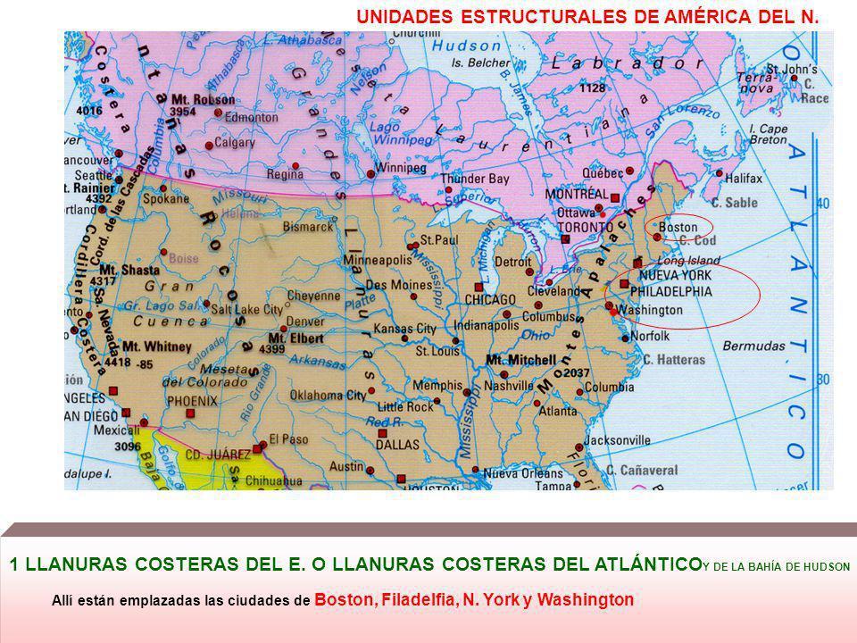 UNIDADES ESTRUCTURALES DE AMÉRICA DEL N. 1 LLANURAS COSTERAS DEL E. O LLANURAS COSTERAS DEL ATLÁNTICO Y DE LA BAHÍA DE HUDSON Allí están emplazadas la