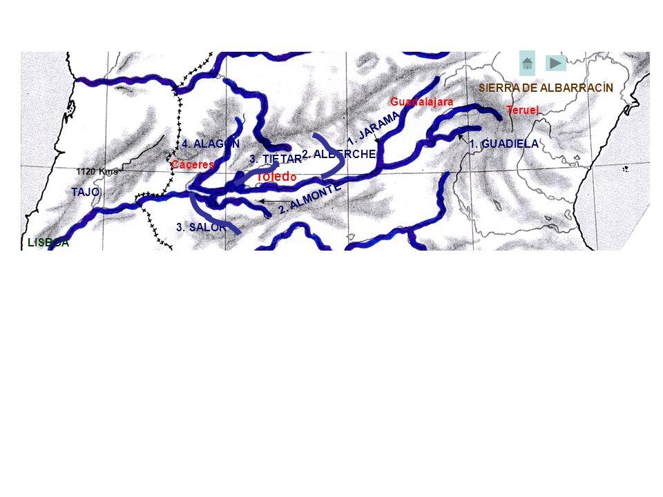 Cáceres Toled o Guadalajara Teruel LISBOA 2. ALBERCHE 3. TIÉTAR 4. ALAGÓN 1. JARAMA 1. GUADIELA 2. ALMONTE 3. SALOR TAJO SIERRA DE ALBARRACÍN 1120 Kms