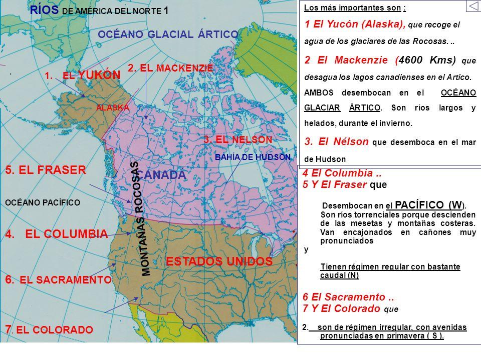 1.EL YUKÓN ESTADOS UNIDOS ALASKA CANADÁ. 2. EL MACKENZIE OCÉANO GLACIAL ÁRTICO OCÉANO PACÍFICO Los más importantes son : 1 El Yucón (Alaska), que reco