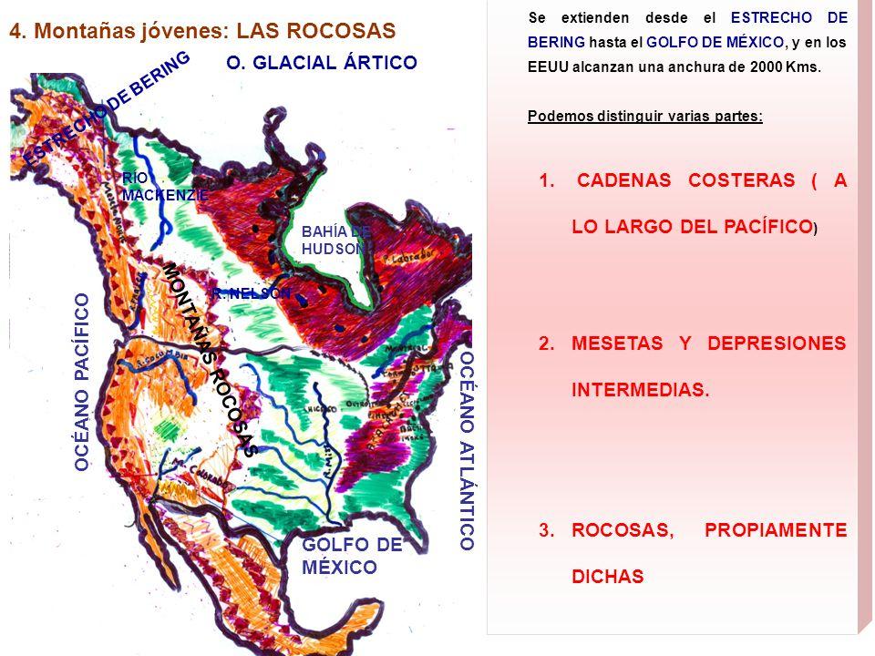 4. Montañas jóvenes: LAS ROCOSAS Se extienden desde el ESTRECHO DE BERING hasta el GOLFO DE MÉXICO, y en los EEUU alcanzan una anchura de 2000 Kms. Po