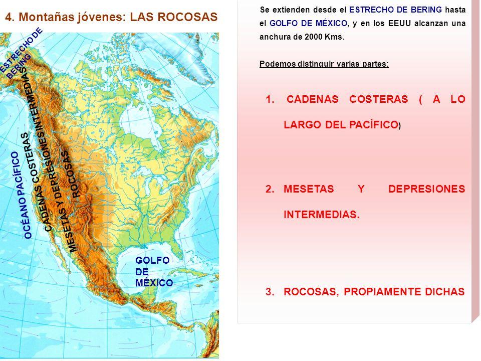 4. Montañas jóvenes: LAS ROCOSAS ESTRECHO DE BERING GOLFO DE MÉXICO OCÉANO PACÍFICO Se extienden desde el ESTRECHO DE BERING hasta el GOLFO DE MÉXICO,