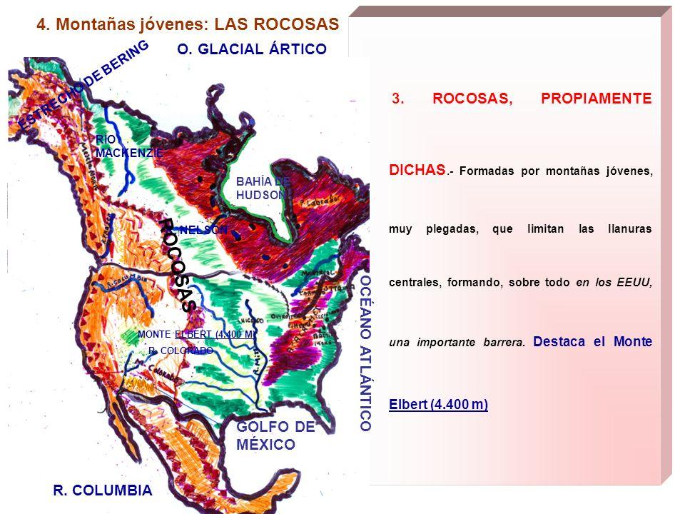 4. Montañas jóvenes: LAS ROCOSAS 3. ROCOSAS, PROPIAMENTE DICHAS.- Formadas por montañas jóvenes, muy plegadas, que limitan las llanuras centrales, for