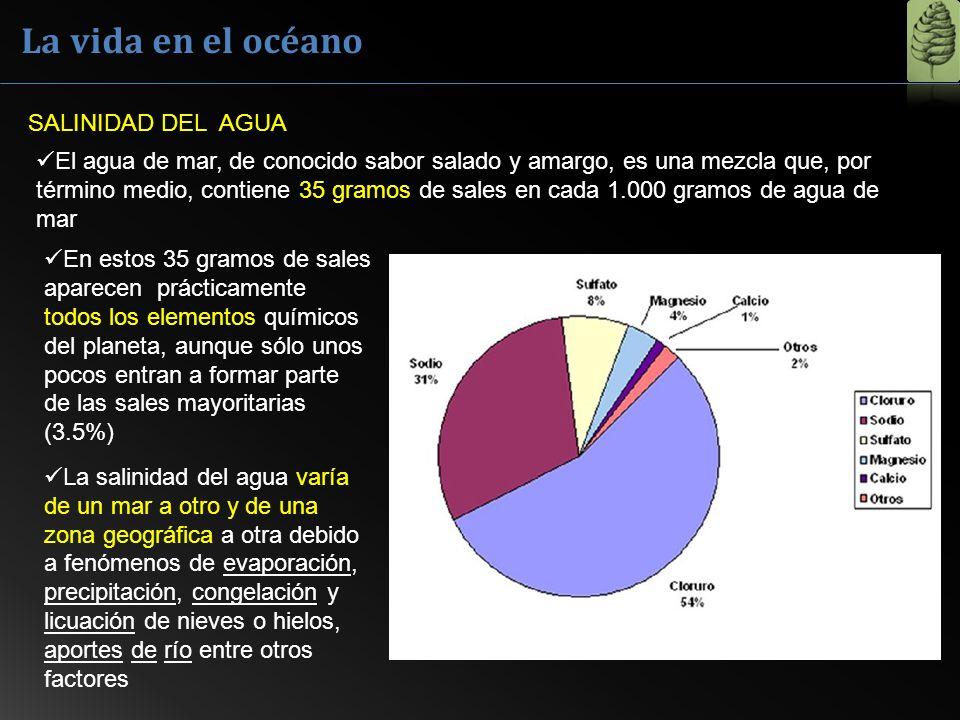 La vida en el océano Cómo afecta a los organismos marinos La salinidad tiene una gran importancia para la vida de los diferentes organismos marinos, ya que sufrirán una serie de alteraciones metabólicas y finalmente la muerte si sus procesos osmorreguladores no son suficientemente efectivos.