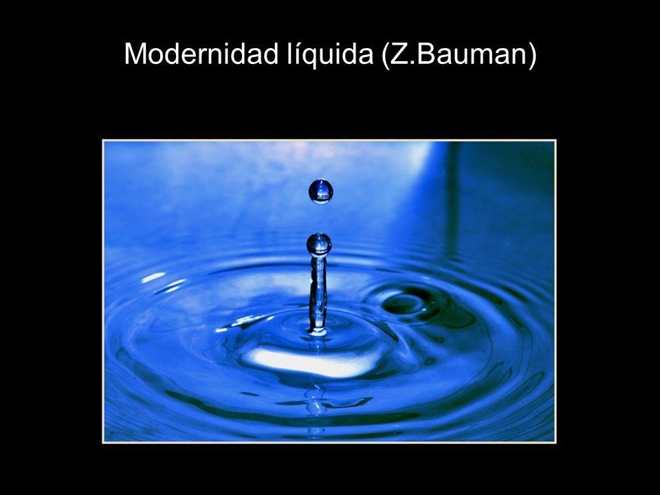 Modernidad líquida (Z.Bauman)