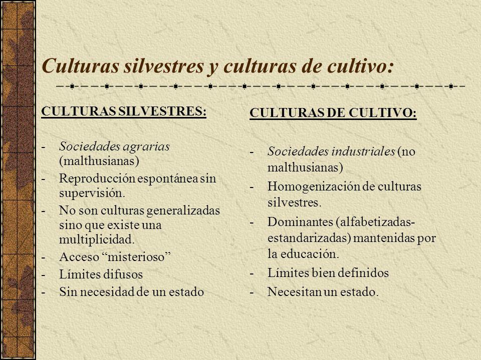 Culturas silvestres y culturas de cultivo: CULTURAS SILVESTRES: -Sociedades agrarias (malthusianas) -Reproducción espontánea sin supervisión. -No son