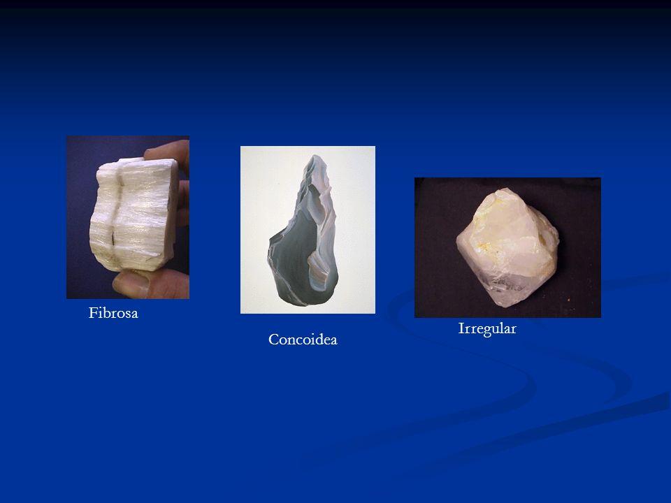 Fibrosa Concoidea Irregular