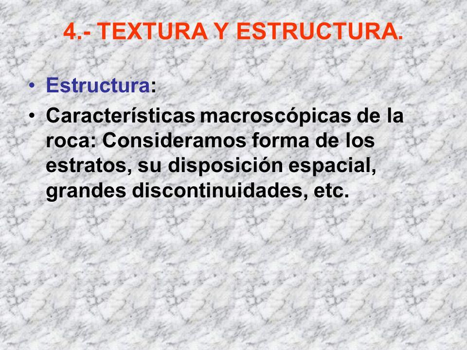 4.- TEXTURA Y ESTRUCTURA. Estructura: Características macroscópicas de la roca: Consideramos forma de los estratos, su disposición espacial, grandes d