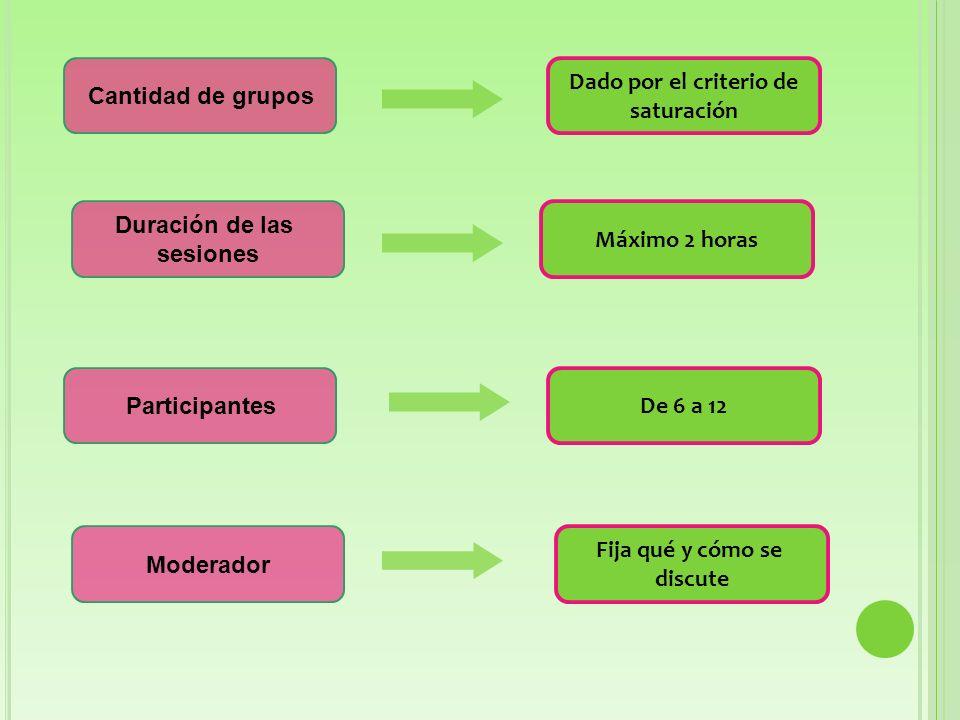 Cantidad de grupos Duración de las sesiones Participantes Moderador Dado por el criterio de saturación Máximo 2 horas De 6 a 12 Fija qué y cómo se discute