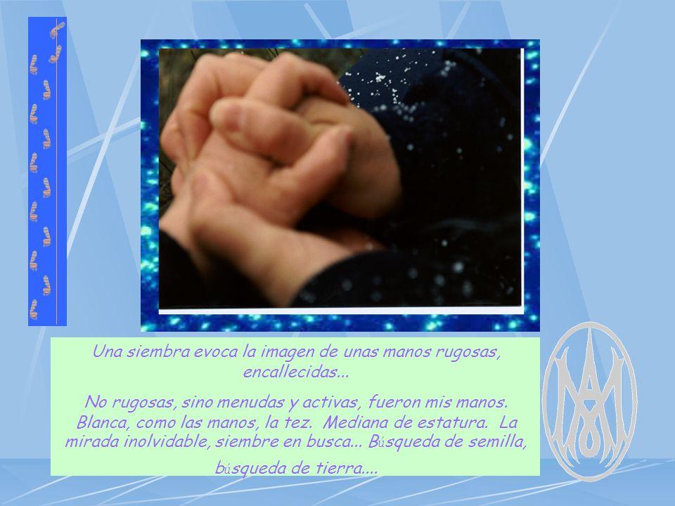 Una siembra evoca la imagen de unas manos rugosas, encallecidas...