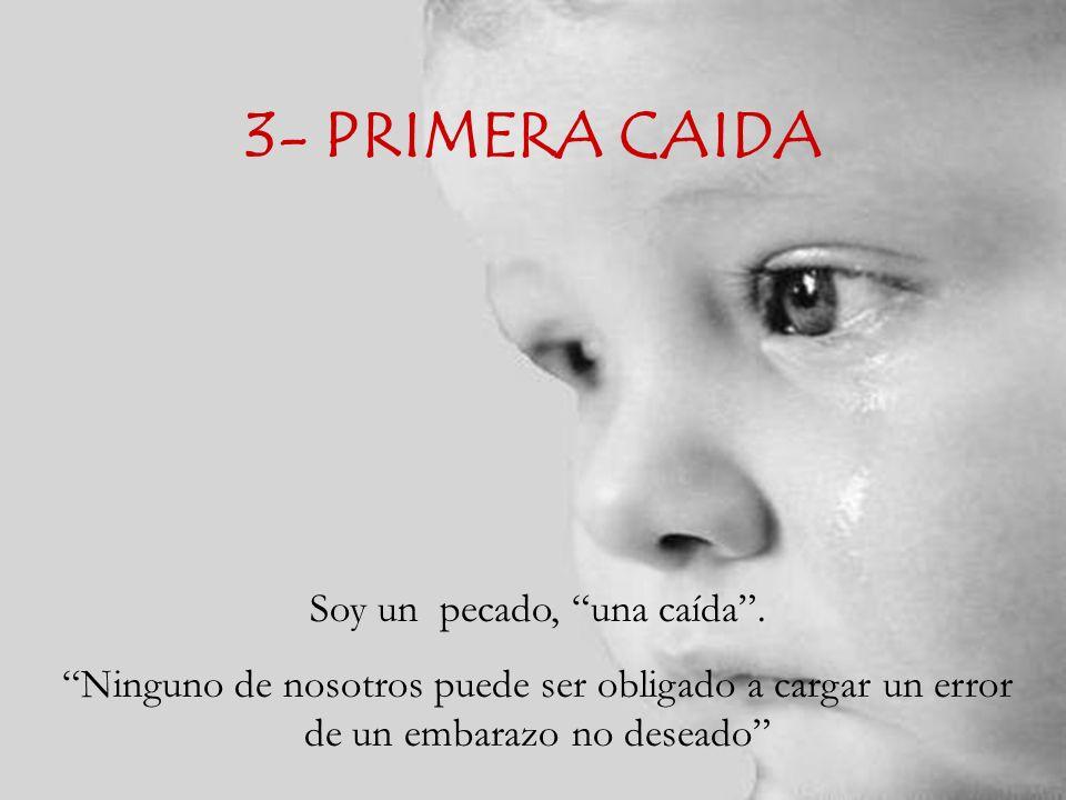 3- PRIMERA CAIDA Soy un pecado, una caída.