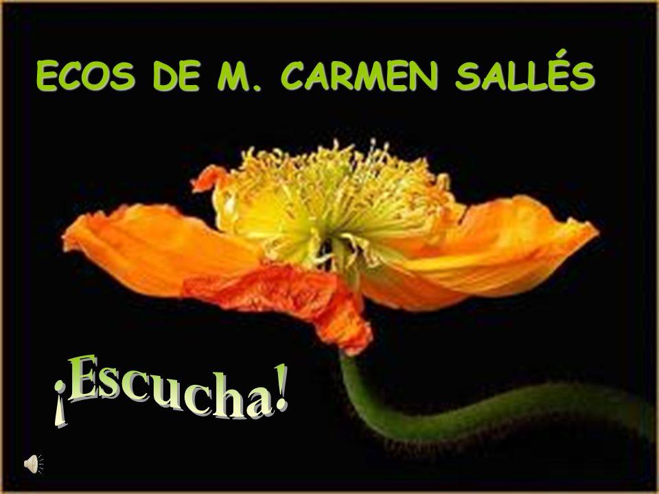 ECOS DE M. CARMEN SALLÉS
