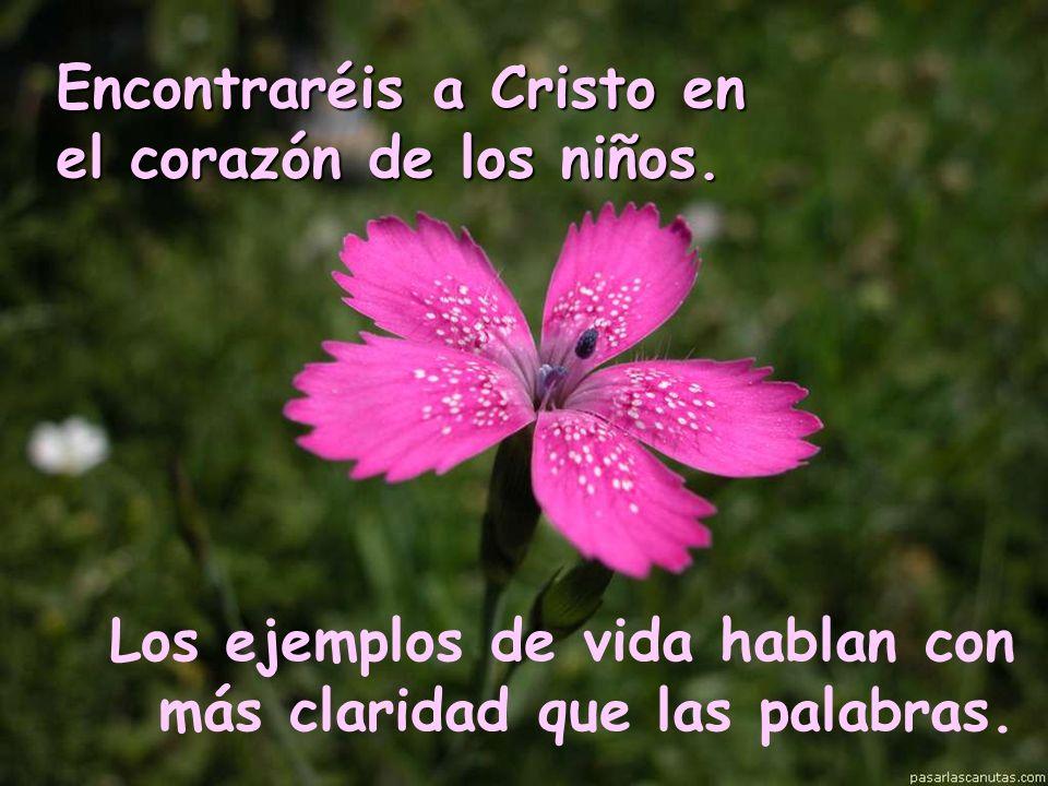 Encontraréis a Cristo en el corazón de los niños. Los ejemplos de vida hablan con más claridad que las palabras.