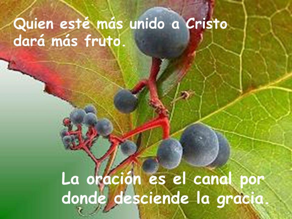La oración es el canal por donde desciende la gracia. Quien esté más unido a Cristo dará más fruto.