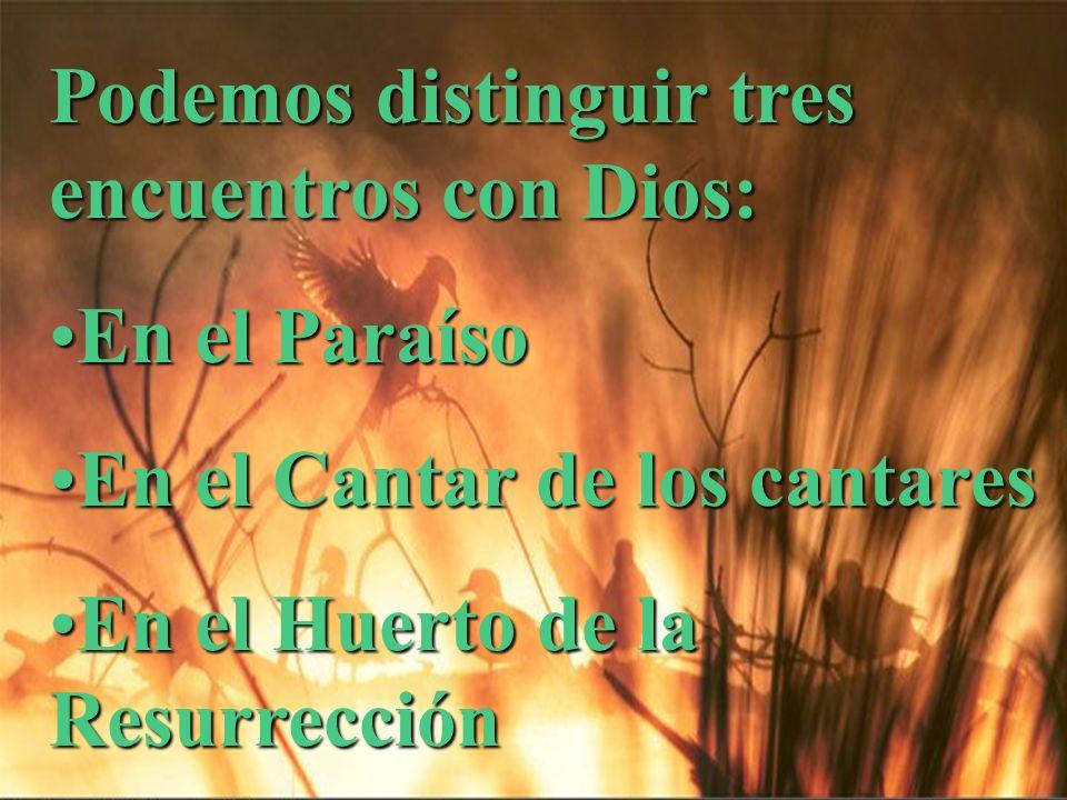 Podemos distinguir tres encuentros con Dios: En el ParaísoEn el Paraíso En el Cantar de los cantaresEn el Cantar de los cantares En el Huerto de la Re