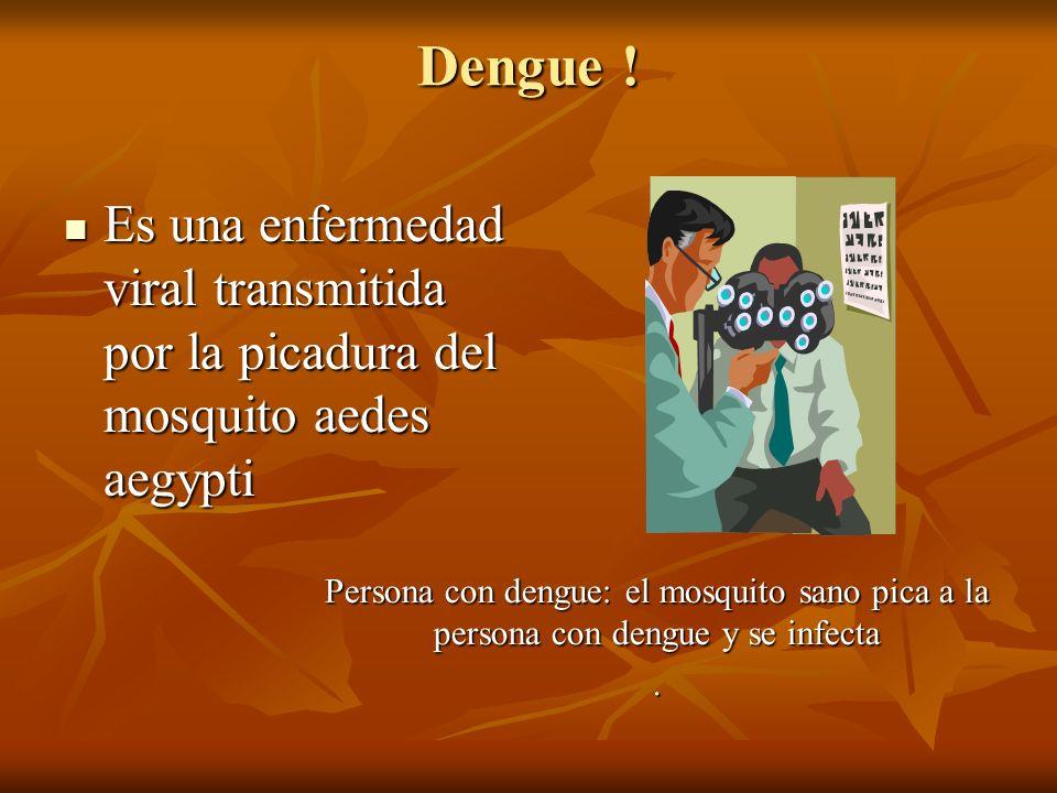 Dengue ! Es una enfermedad viral transmitida por la picadura del mosquito aedes aegypti Es una enfermedad viral transmitida por la picadura del mosqui