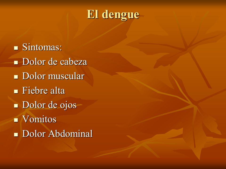 El dengue Sintomas: Sintomas: Dolor de cabeza Dolor de cabeza Dolor muscular Dolor muscular Fiebre alta Fiebre alta Dolor de ojos Dolor de ojos Vomito