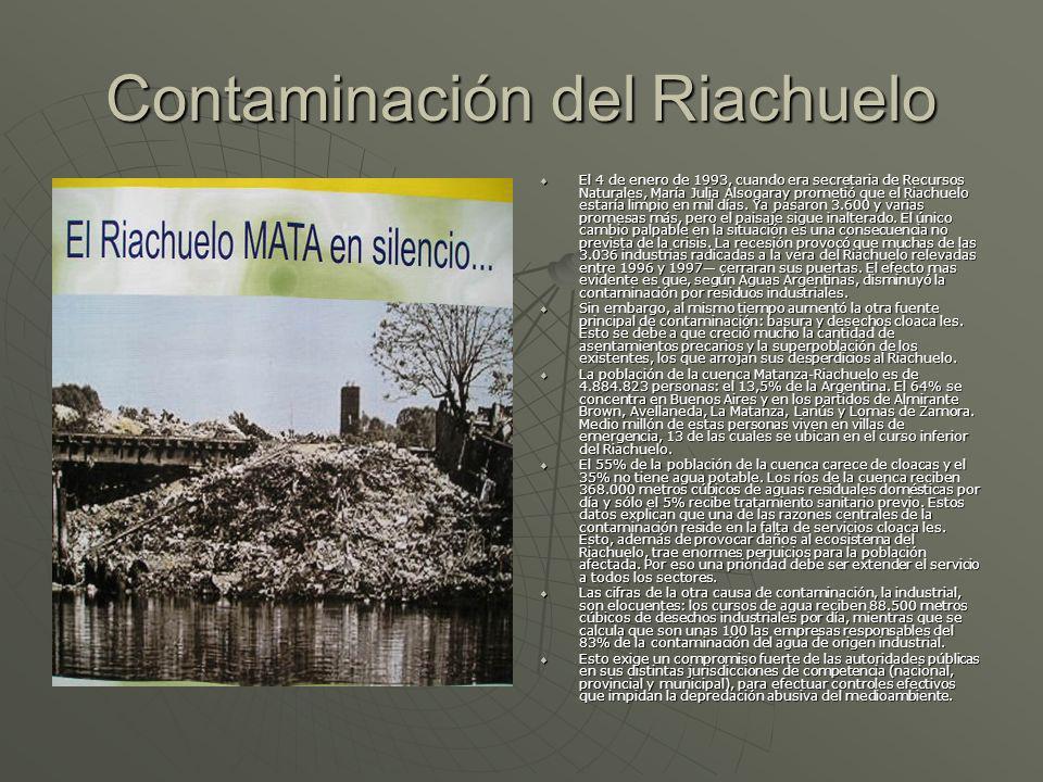 Contaminación del Riachuelo El 4 de enero de 1993, cuando era secretaria de Recursos Naturales, María Julia Alsogaray prometió que el Riachuelo estarí