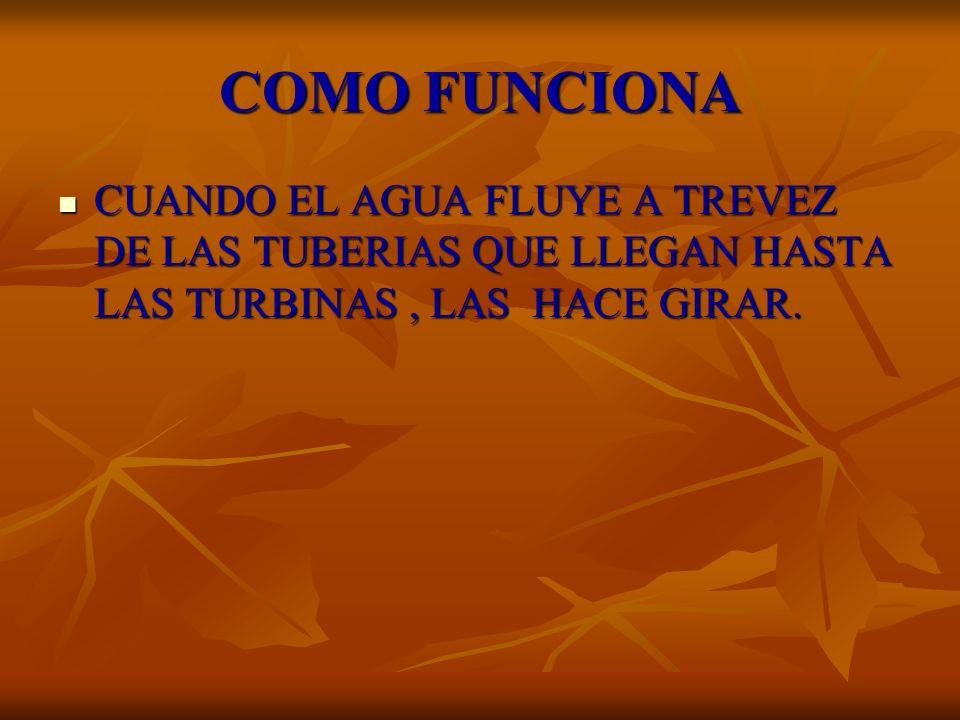 COMO FUNCIONA CUANDO EL AGUA FLUYE A TREVEZ DE LAS TUBERIAS QUE LLEGAN HASTA LAS TURBINAS, LAS HACE GIRAR. CUANDO EL AGUA FLUYE A TREVEZ DE LAS TUBERI