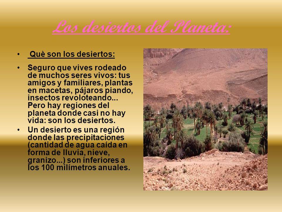 Los desiertos del Planeta: Què son los desiertos: Seguro que vives rodeado de muchos seres vivos: tus amigos y familiares, plantas en macetas, pájaros