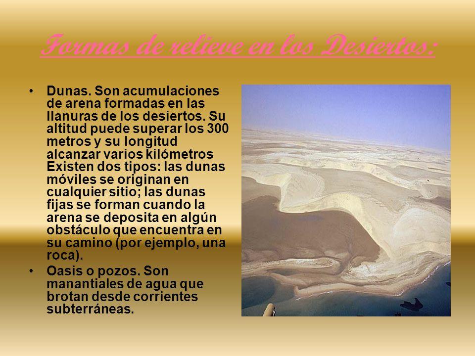 Formas de relieve en los Desiertos: Dunas. Son acumulaciones de arena formadas en las llanuras de los desiertos. Su altitud puede superar los 300 metr