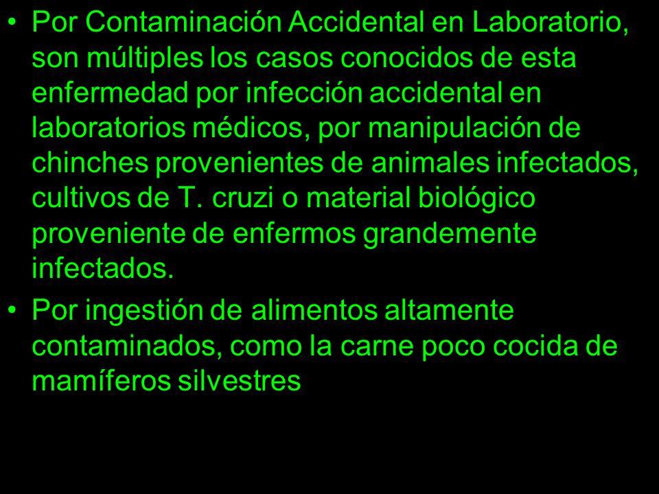 Por Contaminación Accidental en Laboratorio, son múltiples los casos conocidos de esta enfermedad por infección accidental en laboratorios médicos, po