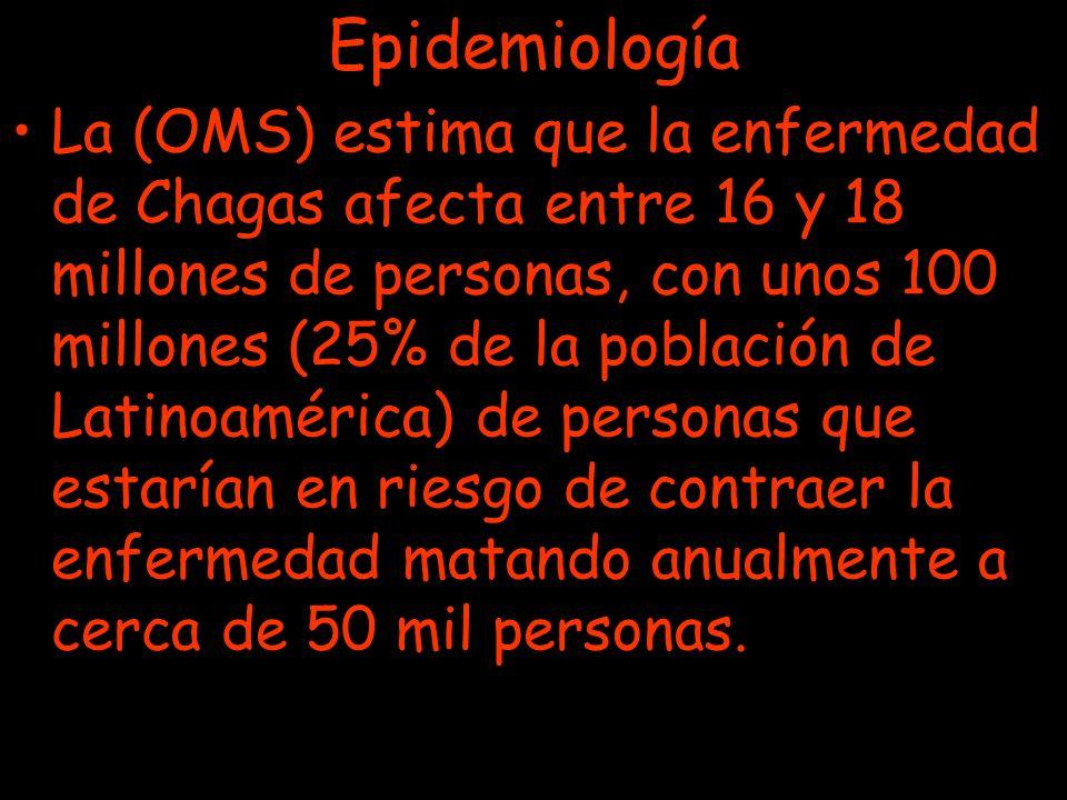 Epidemiología La (OMS) estima que la enfermedad de Chagas afecta entre 16 y 18 millones de personas, con unos 100 millones (25% de la población de Lat