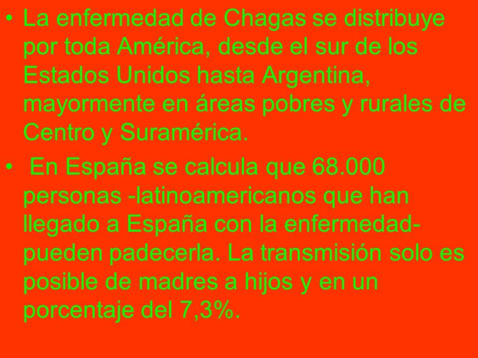 La enfermedad de Chagas se distribuye por toda América, desde el sur de los Estados Unidos hasta Argentina, mayormente en áreas pobres y rurales de Ce