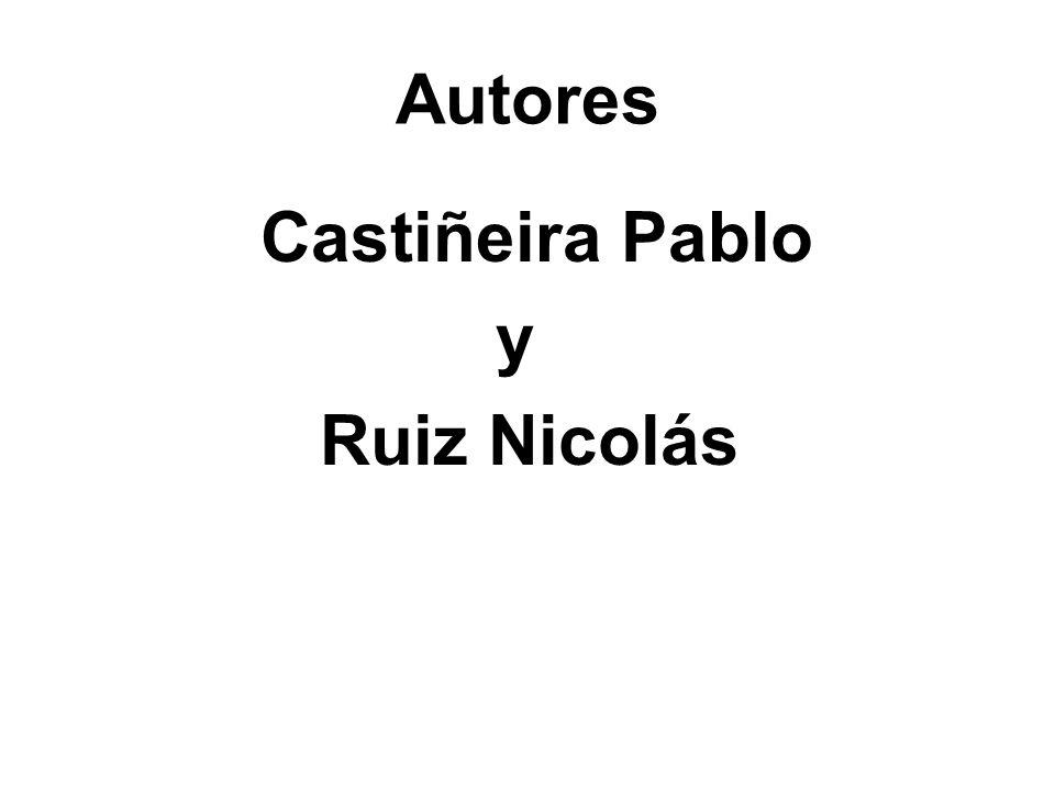 Autores Castiñeira Pablo y Ruiz Nicolás
