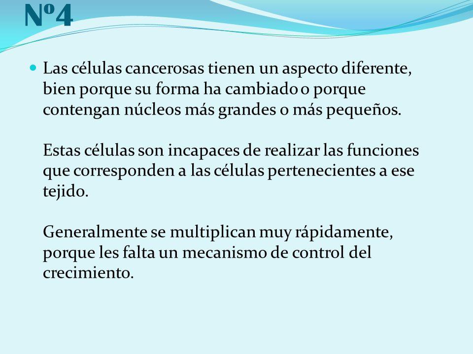 Nº4 Las células cancerosas tienen un aspecto diferente, bien porque su forma ha cambiado o porque contengan núcleos más grandes o más pequeños. Estas