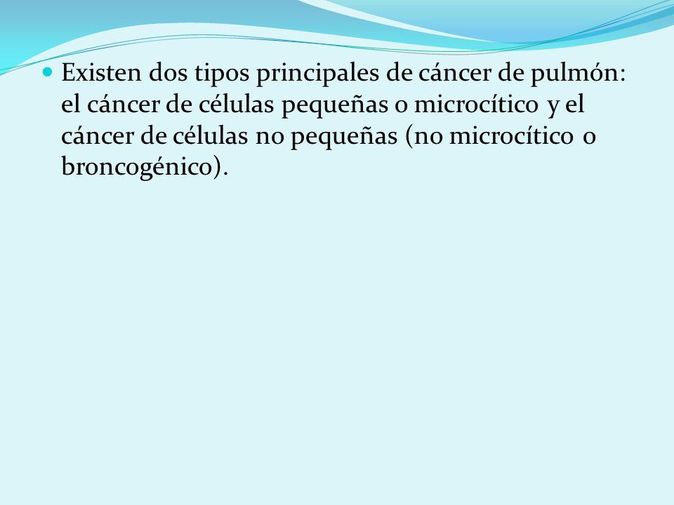 Existen dos tipos principales de cáncer de pulmón: el cáncer de células pequeñas o microcítico y el cáncer de células no pequeñas (no microcítico o br