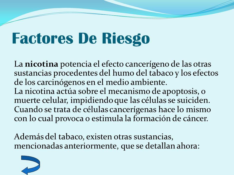 Factores De Riesgo La nicotina potencia el efecto cancerígeno de las otras sustancias procedentes del humo del tabaco y los efectos de los carcinógeno