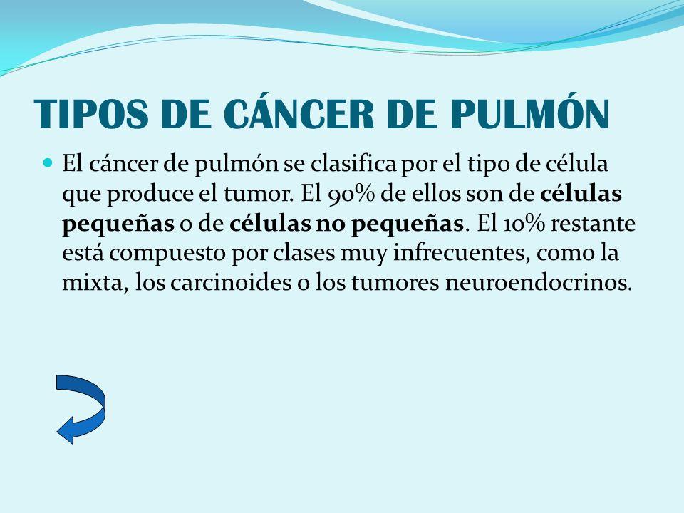 TIPOS DE CÁNCER DE PULMÓN El cáncer de pulmón se clasifica por el tipo de célula que produce el tumor. El 90% de ellos son de células pequeñas o de cé