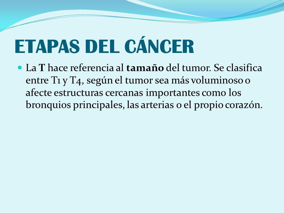 ETAPAS DEL CÁNCER La T hace referencia al tamaño del tumor. Se clasifica entre T1 y T4, según el tumor sea más voluminoso o afecte estructuras cercana